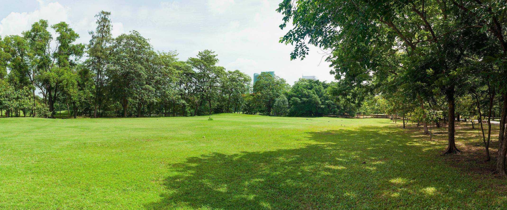 Parcs et jardins for Entretien jardin saint malo